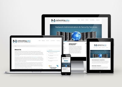 Networking Plus Website